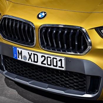 Der erste BMW X2 - Detail: BMW Doppelniere